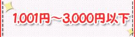 1,001~3,000円以下