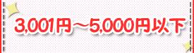3,001~5,000円以下