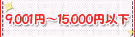 9,001~15,000円以下